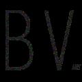 bv-logo-new2
